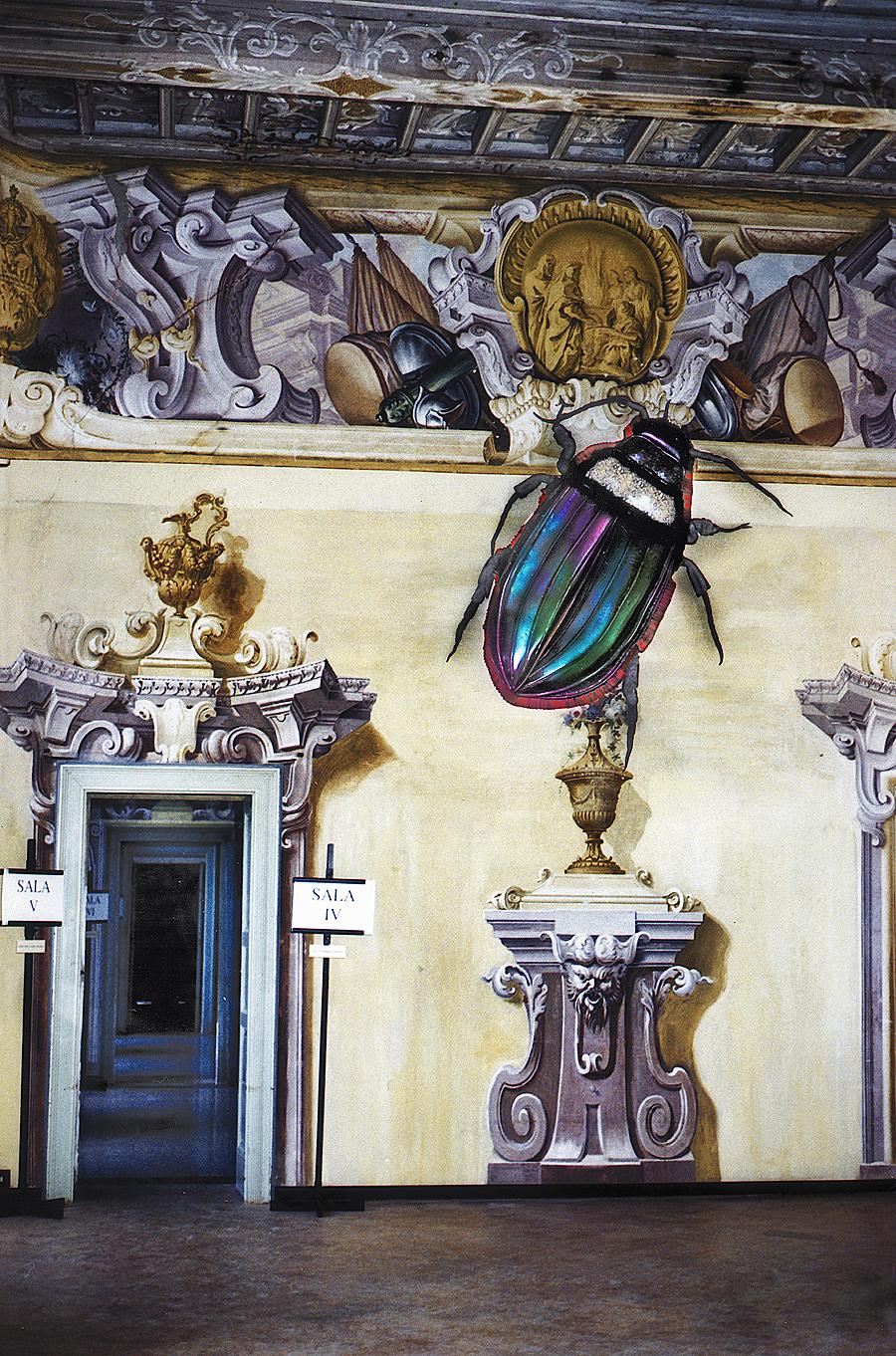 museo-di-storia-innaturale-sala-iv-le-pelli-01-leptinus-ambientata-2-900