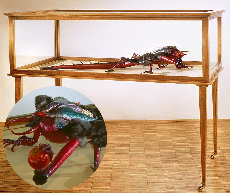 museo-di-storia-innaturale-sala-v-esemplari-rari-03-900