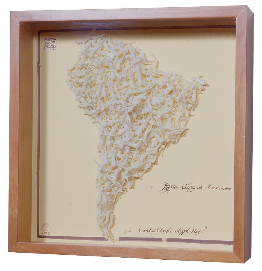 HESPERIA VERGENS AD MERIDIONEM / 50 x 50 x 11 cm