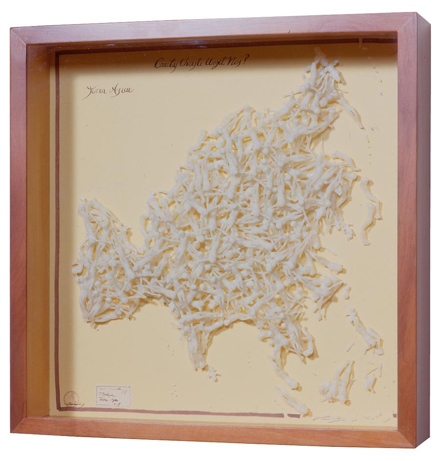 TERRA ASIAE / 50 x 50 x 11 cm
