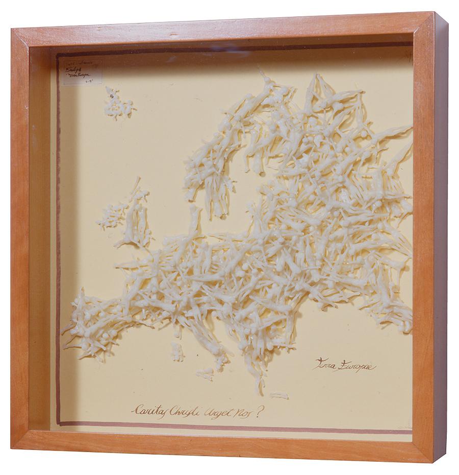 TERRA EUROPAE / 50 x 50 x 11 cm
