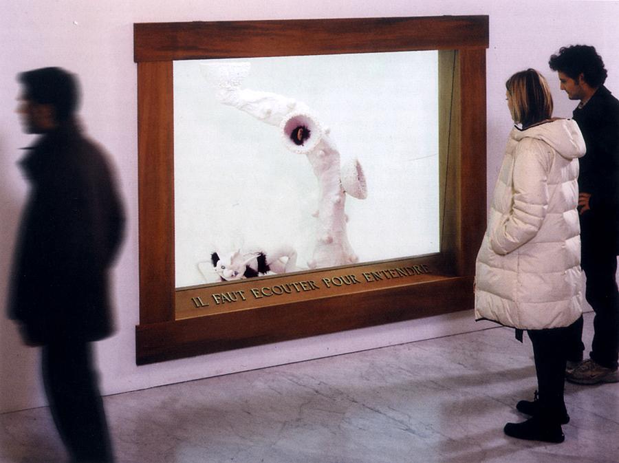 MUSEO DI STORIA INNATURALE - DARIO GHIBAUDO